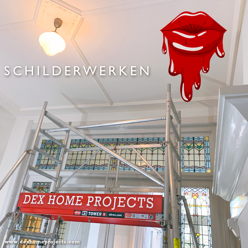 dex home projects  schilder tilburg